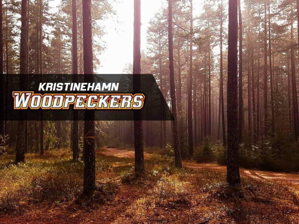 Woodpeckers park i Kristinehamn. Discgolfbana med U-disc rating 4.1